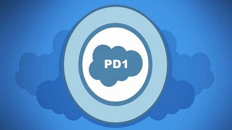 Salesforce Platform Developer 1 - Certification Questions | Udemy