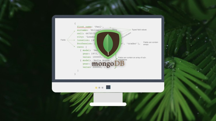 MongoDB - The Beginners Bootcamp