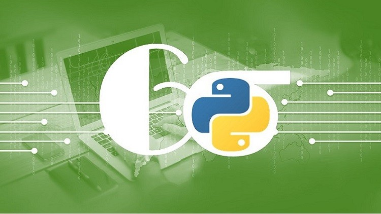Data Analysis in Python for Lean Six Sigma Professionals | Udemy