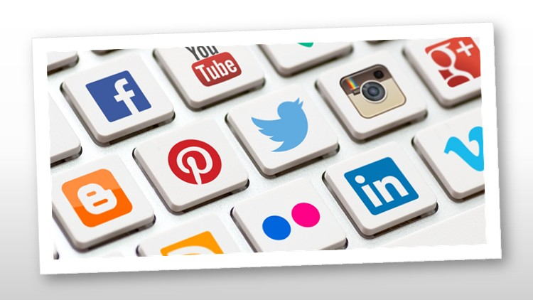 How to Use Social Media Professionally: 13 Courses In 1