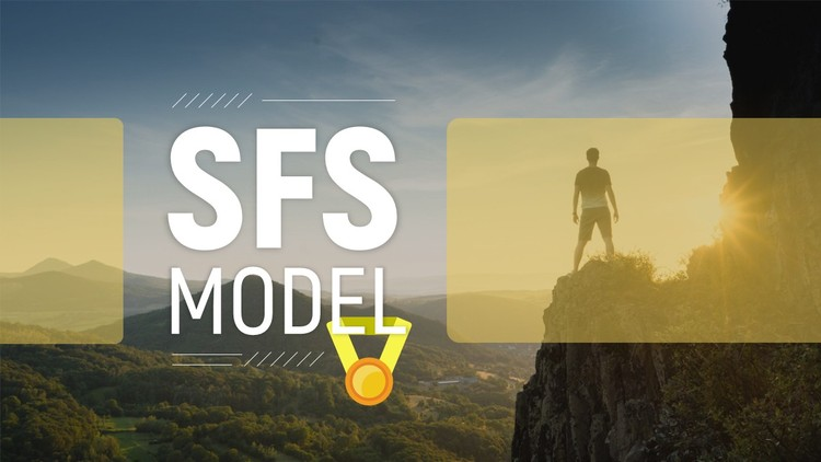 What helped me achieve Success, SFS model (Certificate)
