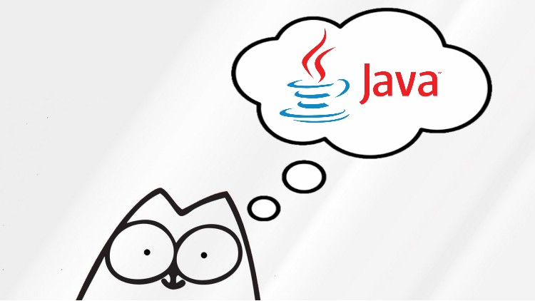 Java for complete beginners. Level One