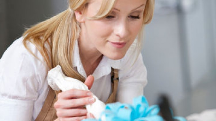 Cake Decorating For Fun And Profit Udemy