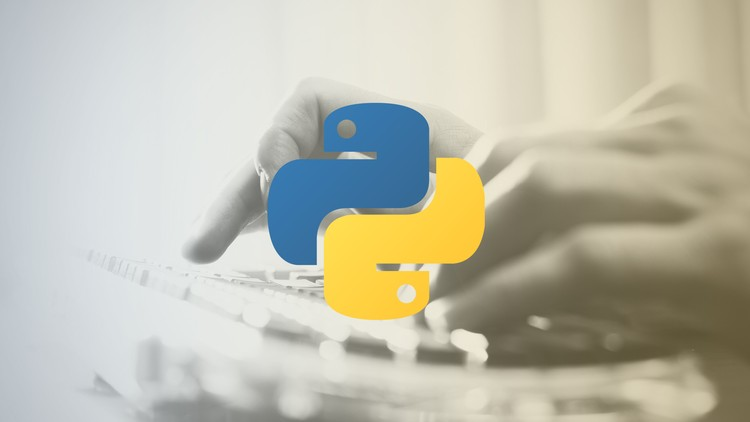 Become a Professional Python Programmer | Udemy