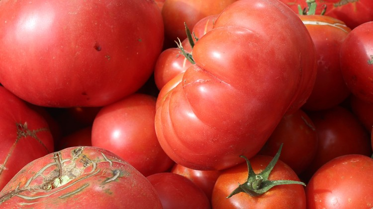 Growing Tomato Heaven: Garden grown tomatoes made easy! | Udemy