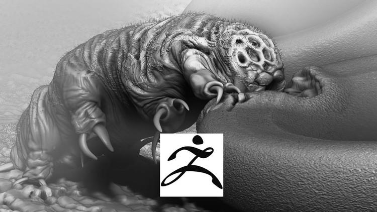 Learn Sculpting in Pixelogics ZBrush Create a Micro Organism