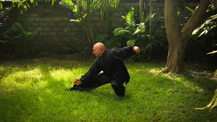 Learn the simple 24 Posture Yang style Taiji form | Udemy