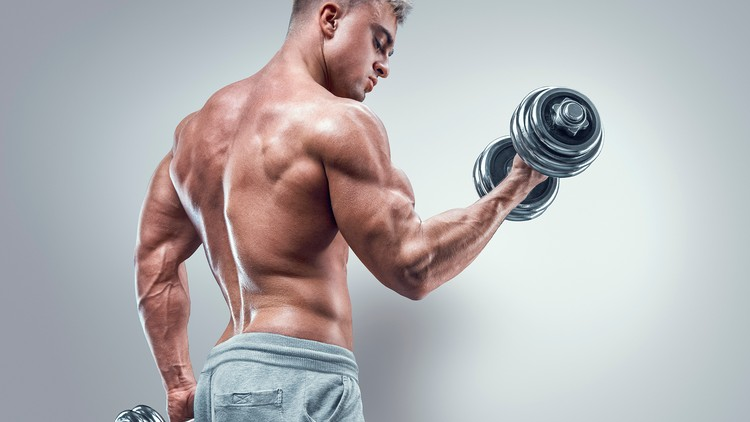 How to Build Huge, Thick and Muscular Arms Fast | Udemy
