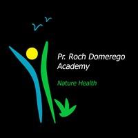 Pr. Roch Domerego Academy